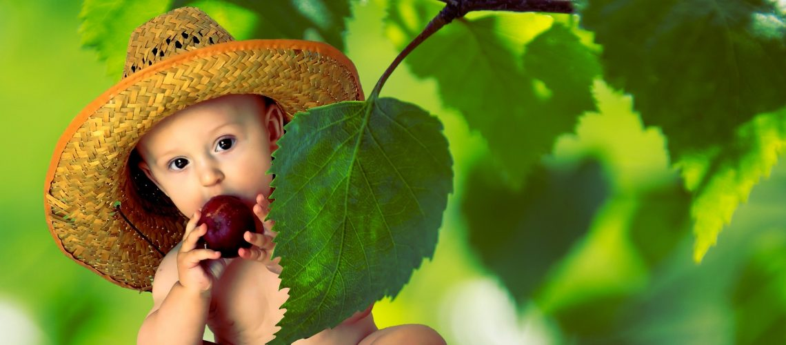 bebe i vitamini